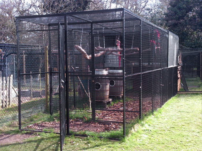 Walk in Cage for Zoos